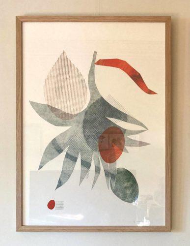 Grevillea Robusta Framed 1