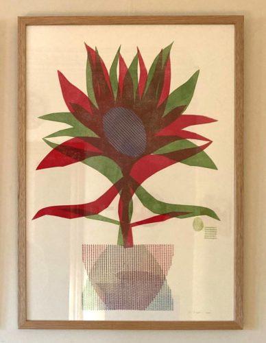 Grevillea Robusta Framed 2